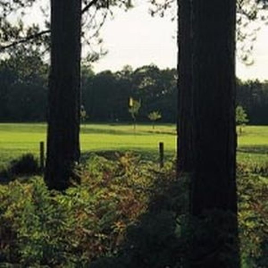 golf_tee